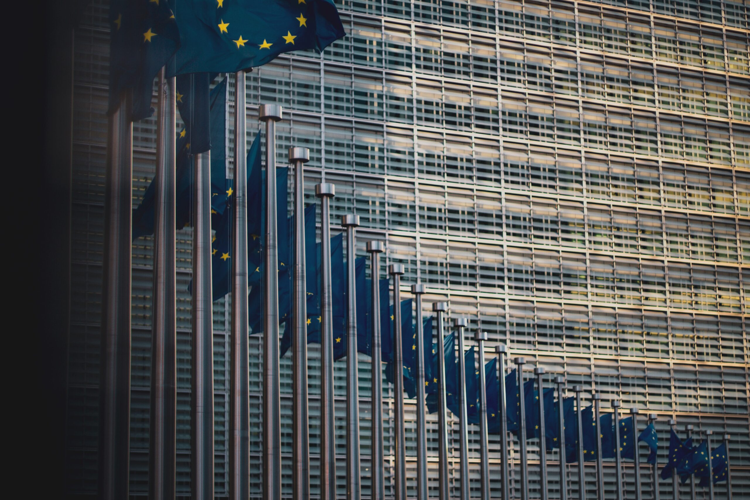 European Parliament Political Groups and European Integration